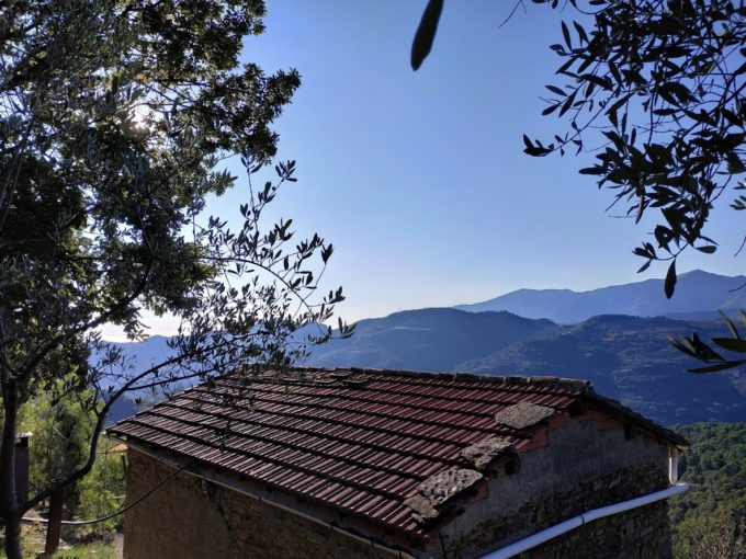 Località Luvaira, tra Dolceacqua e San Biagio della Cima, terreno di circa 7.900 mq, terrazzato, con rustico di mq. 90